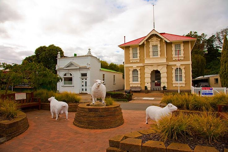 Sheep in the street in, Hunterville, see more at New Zealand Journeys app for iPad www.gopix.co.nz