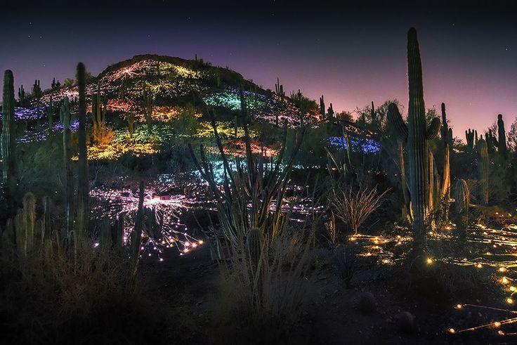 Fields Of Light Phoenix Az Desert Botanical Gardens Sculpture