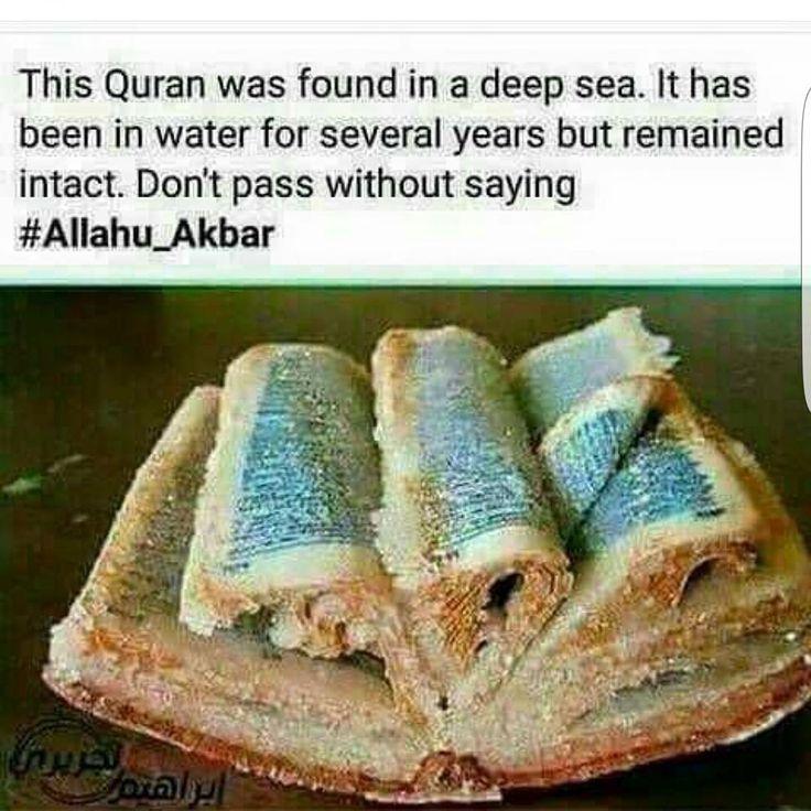 Subhan Allah...  Ma Sha Allah..  Allah U Akbar