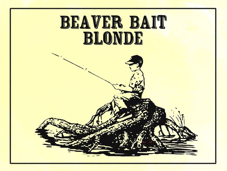 Beardslee Public House's Beaver Bait Blonde is an easy drinking ale that will quench your thirst and wake up your taste buds. #Beardslee #BeardsleePublicHouse #BeaverBaitBlonde #beer