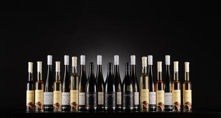 Zitavske vinice family ;)