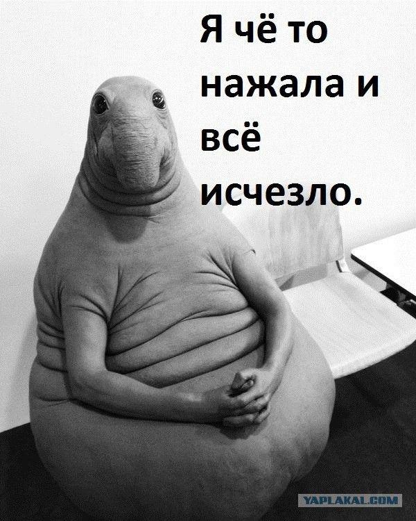 6 минут назад «Доктор, что со мной»: экспонат «Ждун» покорил соцсети