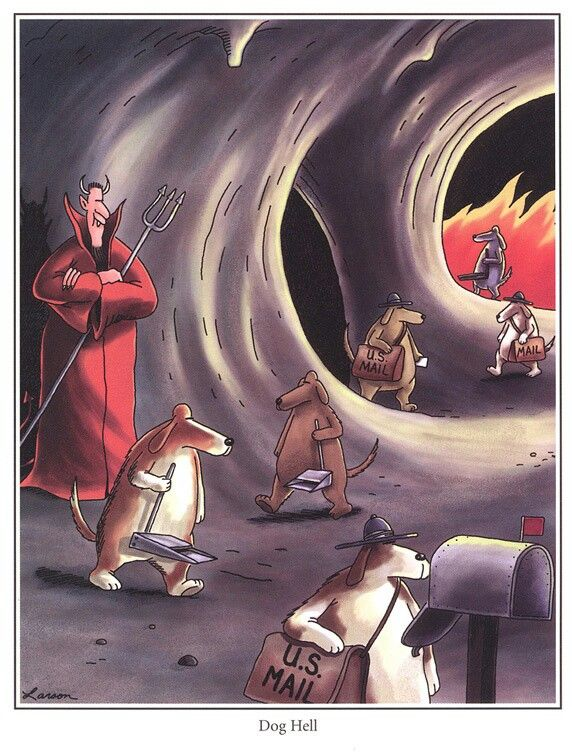 Funny Happy Birthday Horse together with The Far Side further Promogiant   funny Fat Man Cartoon 22 furthermore Funny Horse Cartoon Pictures in addition Scary Cows. on old farmer brown cartoons
