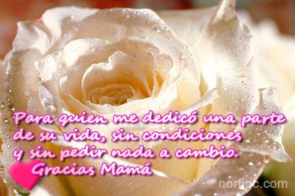 Para quien me dedicó una parte de su vida, sin condiciones y sin pedir nada a cambio. Gracias  Mamá