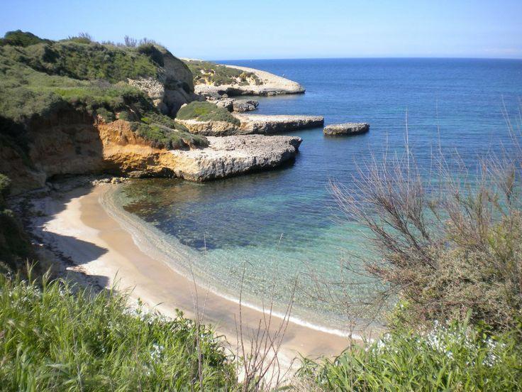 Appartamento a Porto Torres - Cagliari www.perterrepermari.it