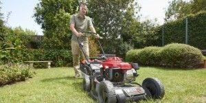 Spring Survival Skills to Primer Your Garden