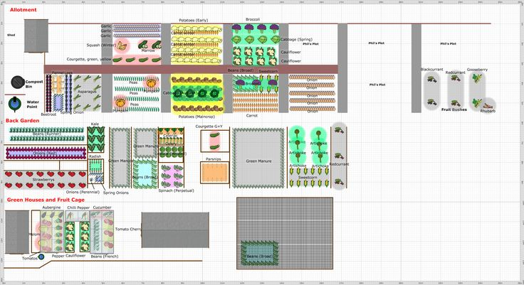 Plans for Allotment, Back Garden and Green Houses