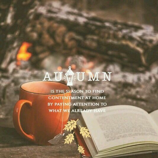 Autumn - finding contentment at home
