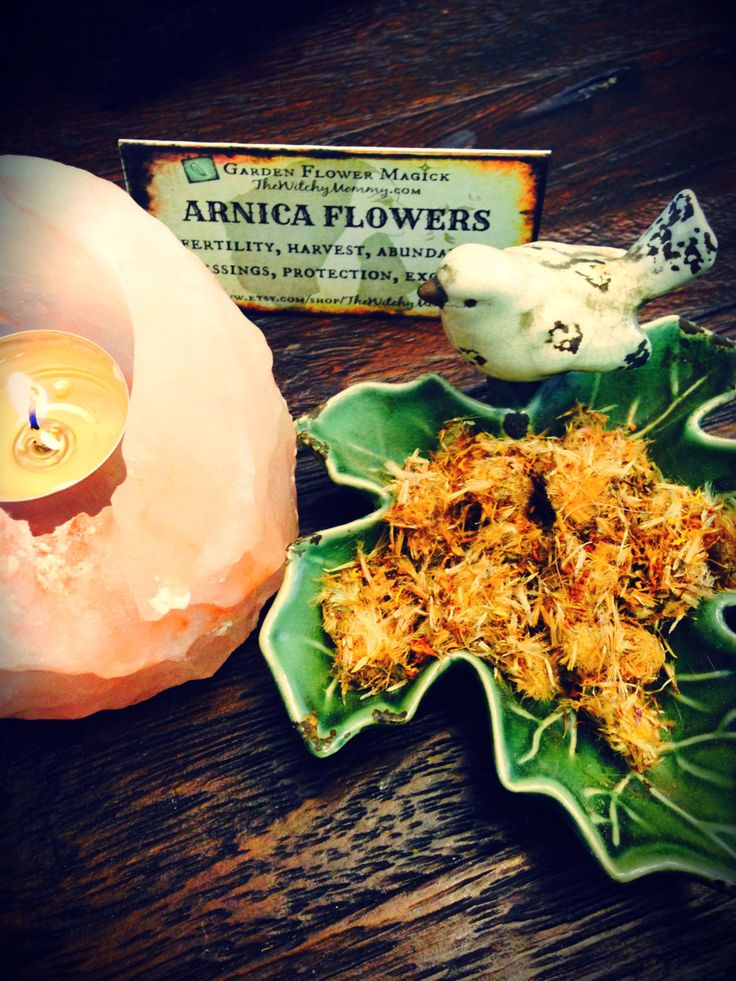 ARNICA FLOWERS, Whole Flowers, Dried Herb, Loose Herb, Arnica Montana, Witches Apothecary