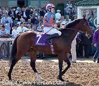 Antonius Pius(2001)(Colt) Danzig- Catchascatchcan By Pursuit Of Love. Outcross In First 5 Generations. 14 Starts 2 Wins 1 Second 2 Thirds. $563,776. Won Railway S(Ire-2), 2nd BC Turf Mile(G1T), 3rd Prix De Moulin De Longchamp(Fr-1), St James's Palace S(Eng-1).