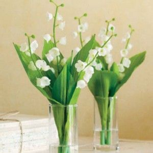 Possible centerpieces - greenery only to pull in the color.
