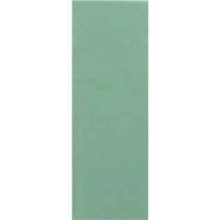 Mint Green Tissue Paper - Any color will work.