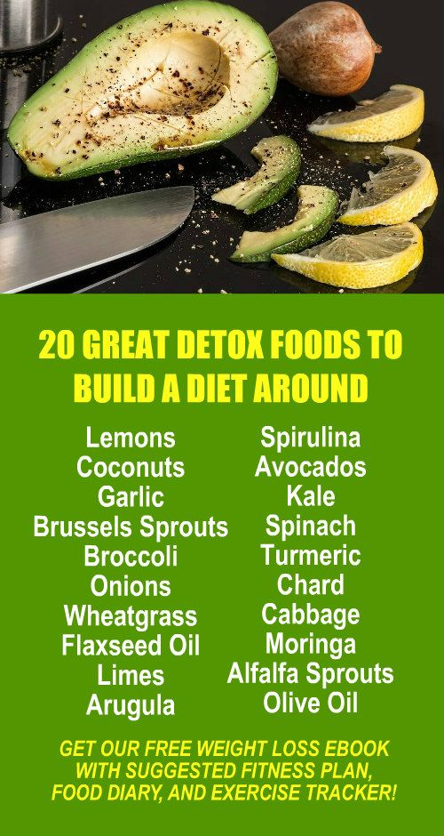 20 Great Detox Foods To Build A Diet Around. Learn about Zija's powerful Moringa based product line. Burn fat and lose weight more efficiently with antioxidant loaded, and alkaline rich Moringa. Get our FREE eBook with suggested fitness plan, food diary,