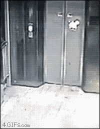 Drunken elevator vandalism karma