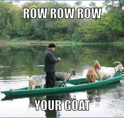 Row Row Row your goat!  #cute #farmlife #goats