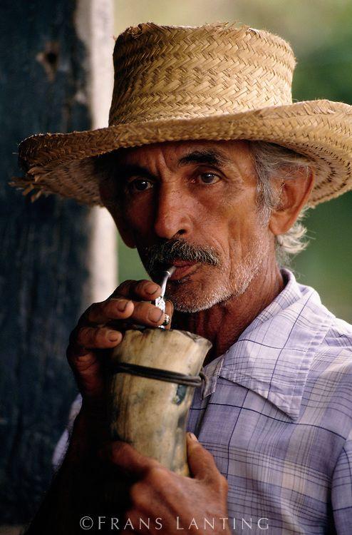 Pantaniero drinking terere tea, Pantanal, Brazil