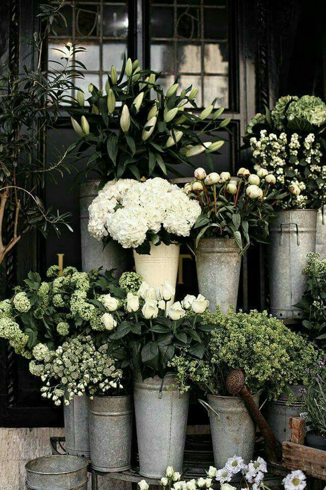 flowers in galvanized pails