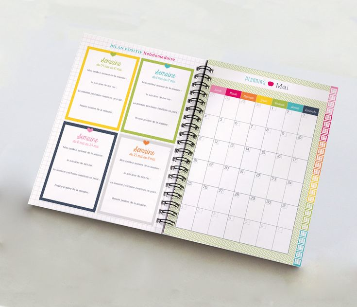 mon-petit-organisateur-de-poche-bilan-positif-planning-mensuel