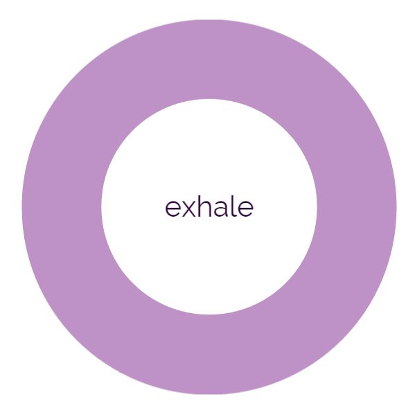The eXHALeR web app is meant to help with your breathing exercises, and has been said to reduce stress and anxiety, by promoting slow and even breathing patterns.