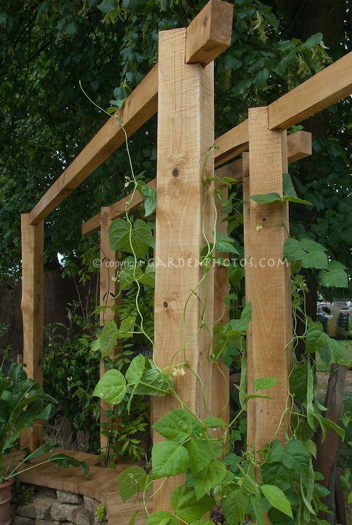 how to build a trellis for wisteria