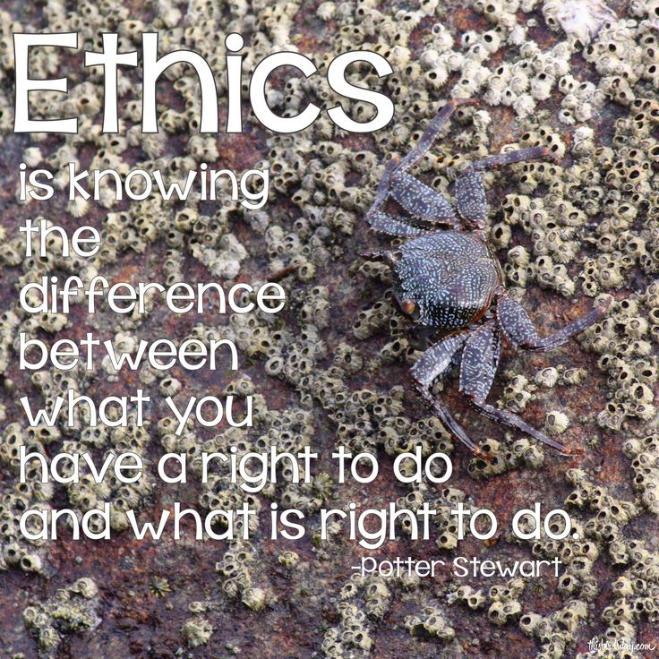 """""""Ethics is knowing the difference between what you have a right to do and what is right to do."""" Potter Stewart - http://thisbirdsday.com/ethics-quote-potter-stewart/ #Dailyquote, #Qotd"""
