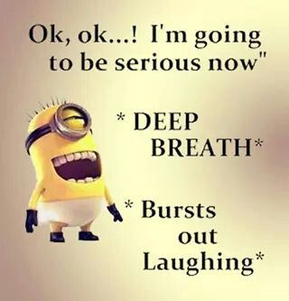 Burst out laughing minion 。◕‿◕。 See my Despicable Me Minions pins https://www.pinterest.com/search/my_pins/?q=minions