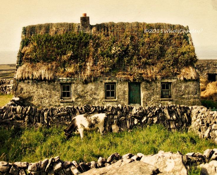 old irish cabin.