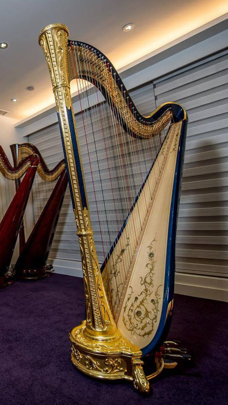 22 best images about harp pedal harp on pinterest the golden rococo and the hard. Black Bedroom Furniture Sets. Home Design Ideas