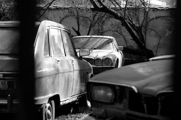 Curtea cu cinci maşini de lux moarte, © Andreea Dobre