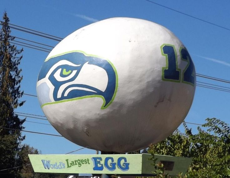 1000+ images about Love My Seahawks on Pinterest | Russell ...
