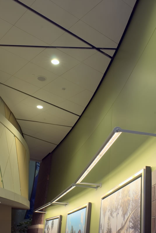 Wall Technologies New Dimensions Acoustical Ceiling Panels