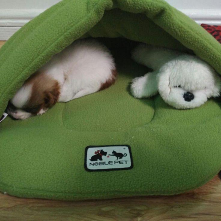1007 best dog doors gates ramps images on pinterest for Best dog door for winter