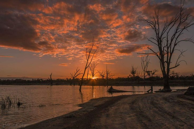Thanks to Vicki Kendrigan for being out there to take gorgeous photos of our region. #Mildura #Local #Photographers