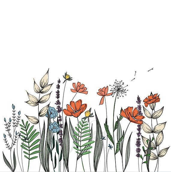 Wildflowers Line Drawing | Wall Decor | Botanical Illustration