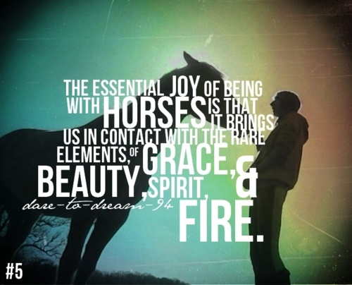 the joy of being with horses
