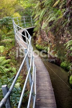 Pupu Hydro Walkway, Golden Bay, New Zealand Royalty Free Stock Photo