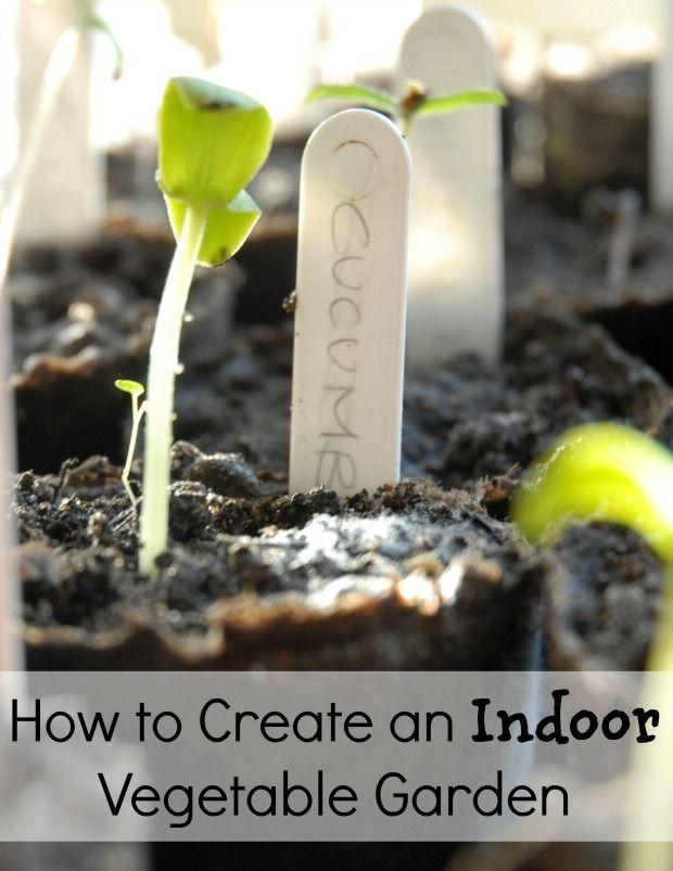 Indoor Vegetable Garden Ideas 10 diy indoor garden ideas herb planters succulents and more The 25 Best Indoor Vegetable Gardening Ideas On Pinterest