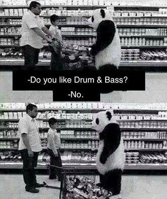 Do you like Drum and Bass ?   #dnb #drumandbass #panda