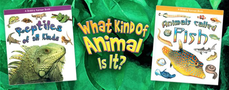 What kind of animal is it? series (Crabtree Publishing)_ The simple text, clear illustrations, and colorful pictures teach children about the major characteristics, such as backbones and cold blood, of each type of animal. Grades K-3
