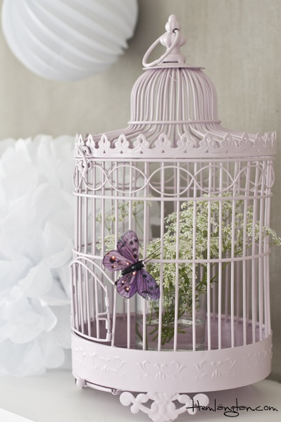 Birdcage..Add a few more butterflies & flowers