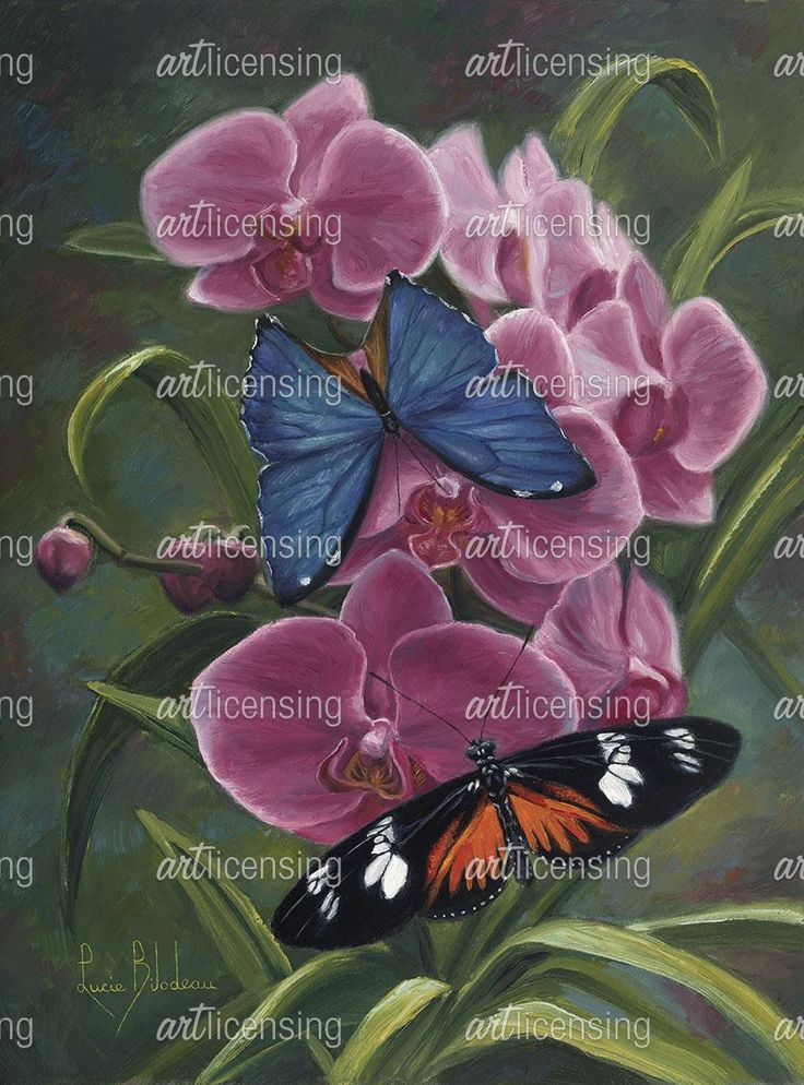 Nature's Poetry | Art Licensing