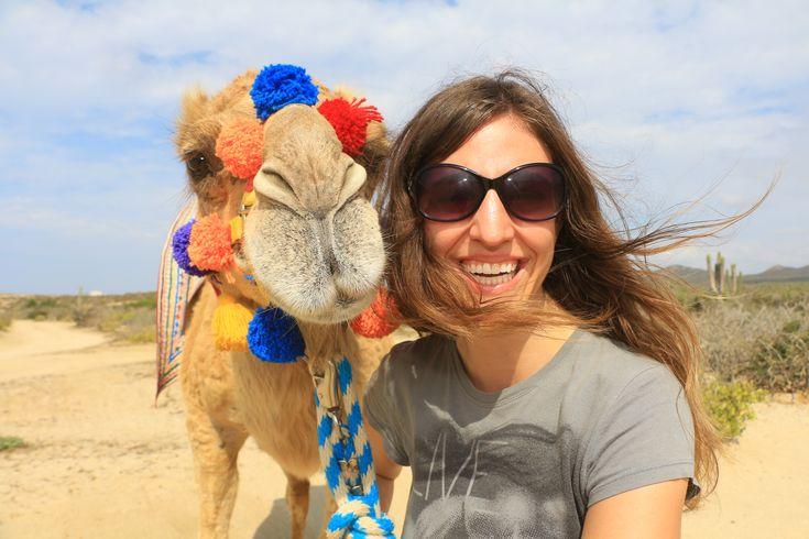 Outbook Safari & Camel Riding with Cabo Adventures in Cabo San Lucas!