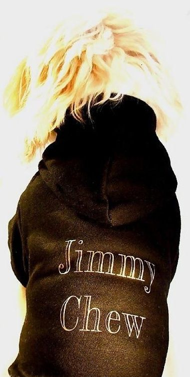 Jimmy Chew Dog Hoodie Puchi Petwear's popular dog Hoodies are famous with many a celebrity!. Sharon Osbourne, Jordon, Colleen to name but a few! Our Hoodies are hand finished in-house. Our Hoodies are machine washable at 30 degrees. They fit snug on your dog and protect the tummy.