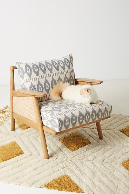 ikat printed cane chair this low slung minimalist frame is rh pinterest cl