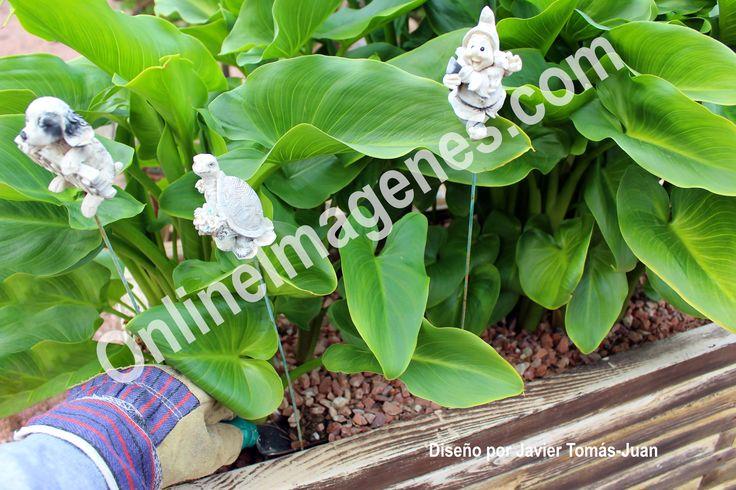 Compra imagen online para proporcionar consejos sobre las herramientas de jardinería mediante estrategias de marketing de contenidos en páginas webs y redes sociales.