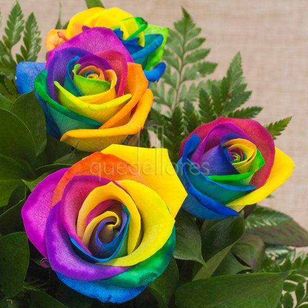Ramo de Rosas Rainbow, originales rosas que forman un arco iris con los colores de sus pétalos #rosas #roses #ramoderosas #rosasrainbow #rainbow #rosasarcoiris #arcoiris