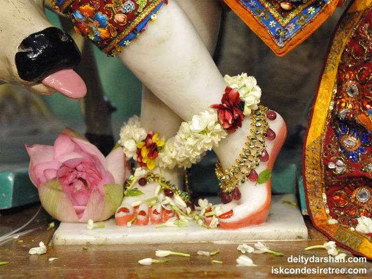 http://harekrishnawallpapers.com/sri-gopinath-feet-wallpaper-003/
