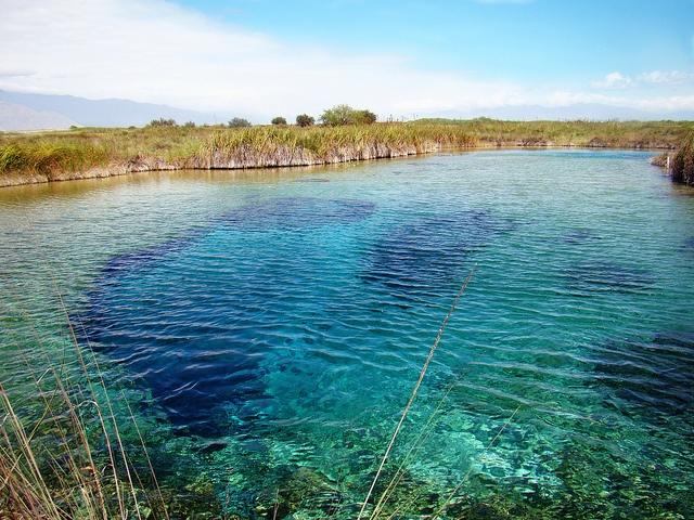 Poza Azul en Cuatro Cienegas Coahuila