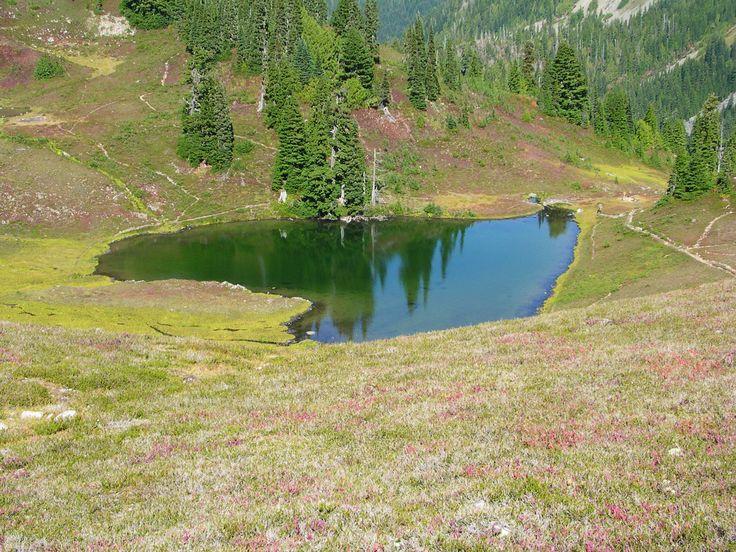 Heart Lake, Olimpik Ulusal Parkı, Washington, ABD