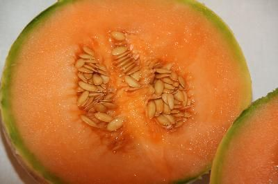 Cantaloupe contains many Vitamins that aid in healing, namely Vitamin A-important for healthy teeth, bones, and mucous membranes, and Vitamin C-which aids in wound repair of bones and teeth.